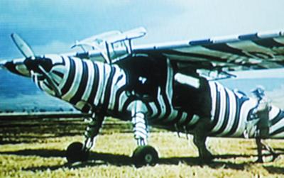 Das berühmte Zebra-Flugzeug Dornier Do 27